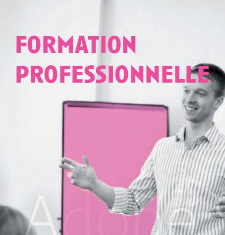 Formation Professionnelle (suite)