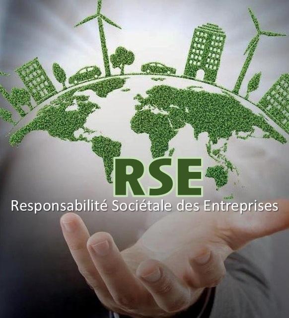RSE : Responsabilité Sociétale des Entreprises